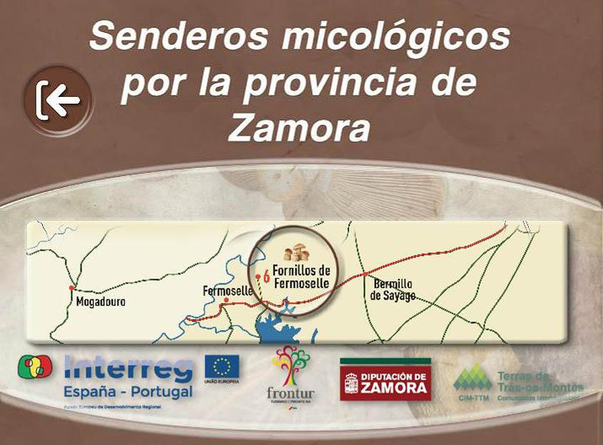 Nueva aplicación móvil con senderos micológicos de Zamora