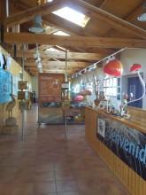 Centro micológico de Navaleno